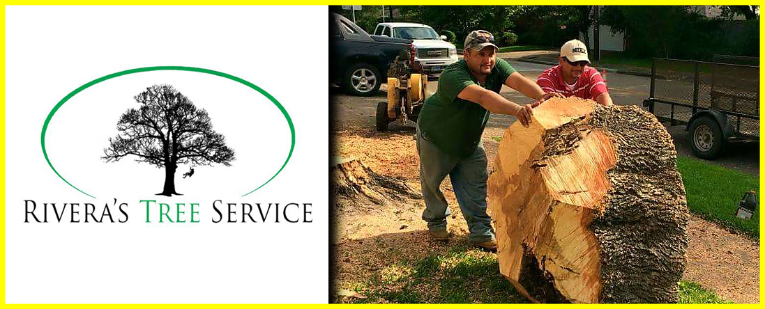 Rivera's Tree Service is a Tree Company in Houston, TX