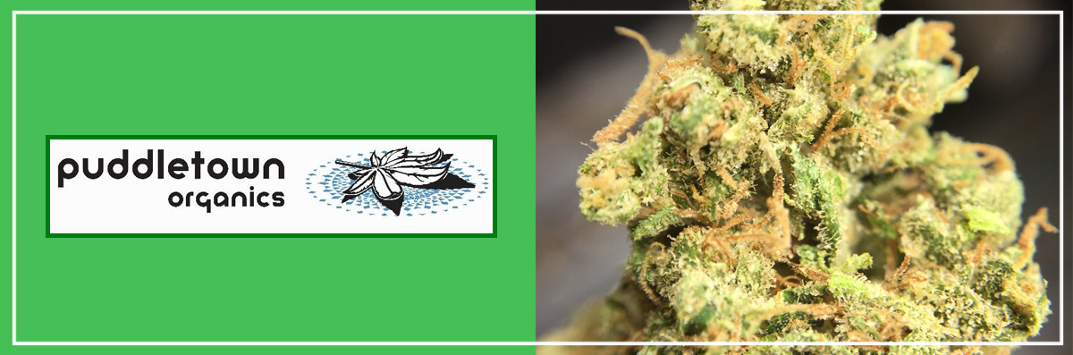 Puddletown Organics is a Recreational Dispensary in Portland, OR